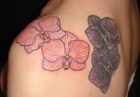 orchid tattoo design